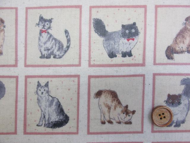 画像1: 綿麻キャンバス 猫・ねこ・ネコ・スクエア柄(生成り)  ラミネート つや消し↑