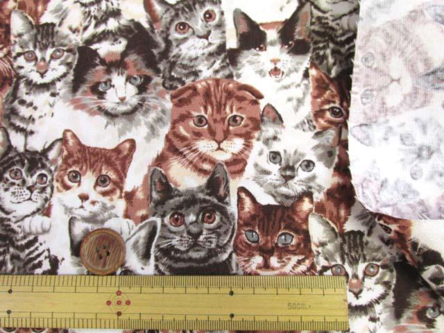 画像3: (5)ねこちゃん大集合・ネコ・猫柄 オックス生地k(サピア) はぎれ95cm