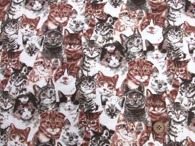 画像2: (5)ねこちゃん大集合・ネコ・猫柄 オックス生地k(サピア) はぎれ95cm