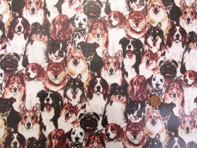 画像2: わんちゃん大集合・イヌ・犬柄 オックス生地 ラミネート はぎれ80cm↑(セピア)