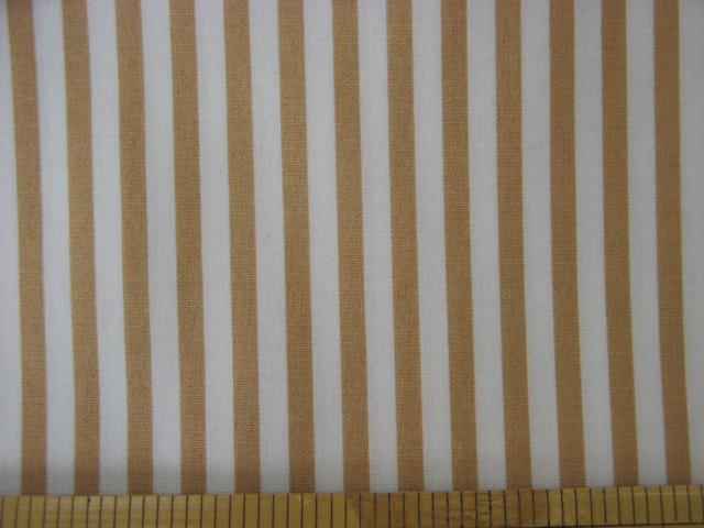 画像1: 定番 ストライプ【中】柄 ブロード生地(ベージュ)