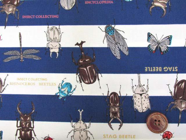 画像1: 🍀昆虫図鑑・カブトムシ・クワガタムシ・ボーダー柄 オックス生地 (紺) はぎれ1m30cm