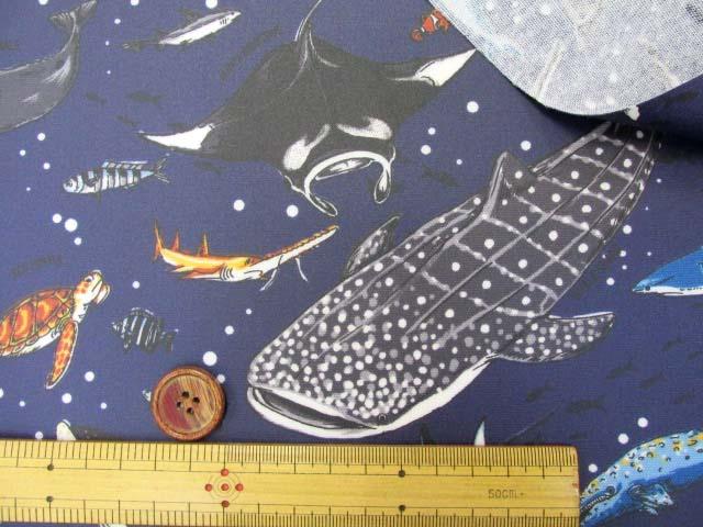 画像3: 海の生き物・サメ・クジラ・カメ柄 オックス生地 (紺) ラミネート (つや消し)