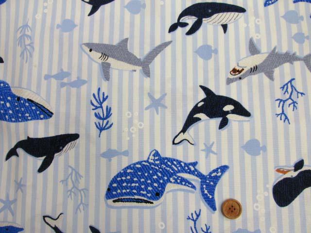 画像2: ▼サメ・シャチ・クジラ・ストライプ柄 オックス生地◆訳ありはぎれ40cm