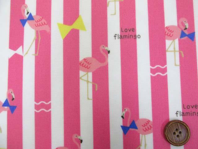 画像1: フラミンゴ・ストライプ柄 オックス生地 (ピンク) ラミネート つや消し