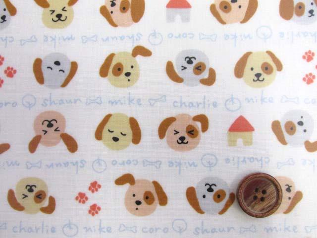 画像1: ドッグネーム・犬・ボーダー柄 スケア生地 (オフ) ラミネート つや消し