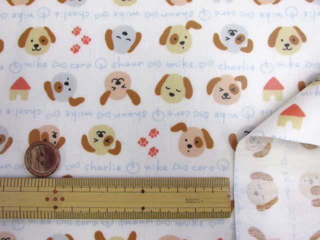 画像3: ドッグネーム・犬・ボーダー柄 スケア生地 (オフ) ラミネート つや消し