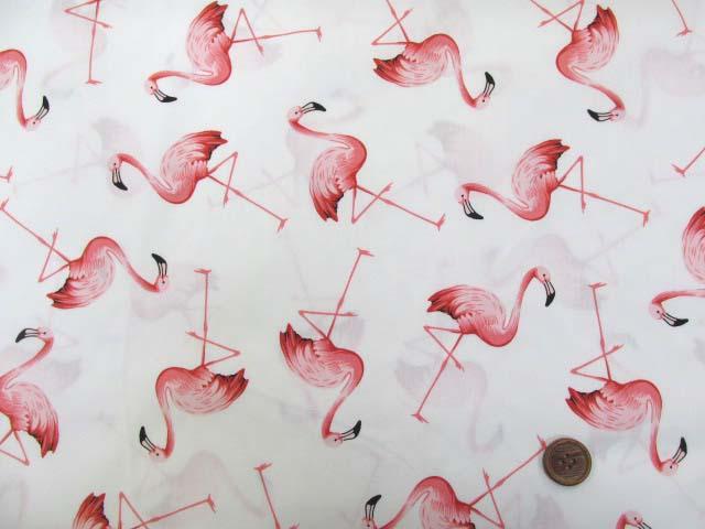 画像2: フラミンゴ・鳥柄 ブロード生地 (オフ)